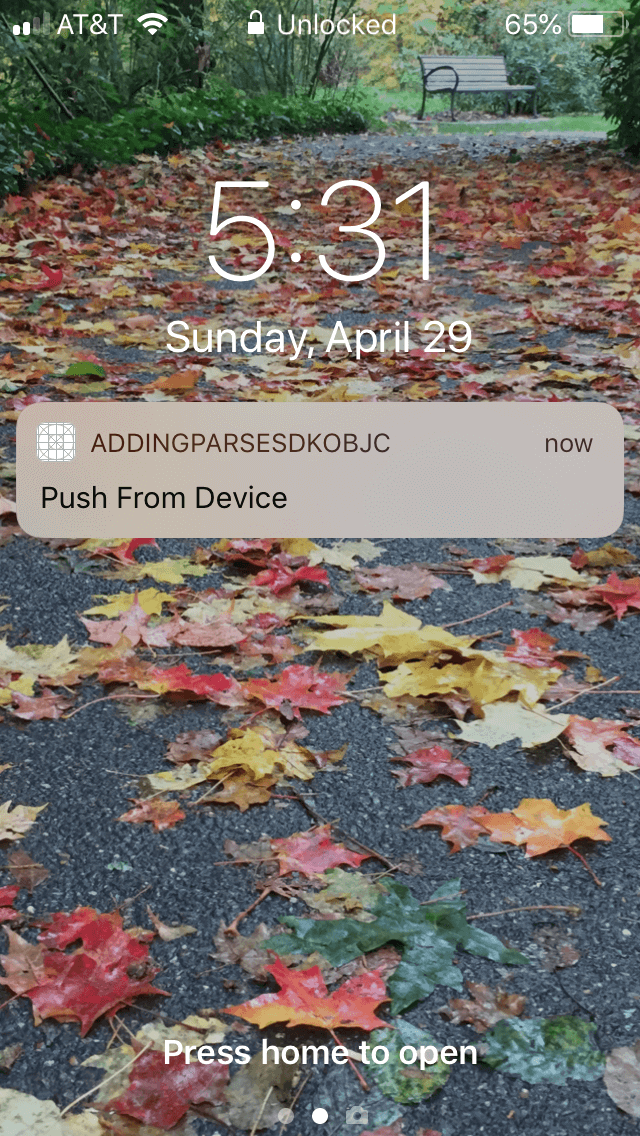 Push Notification via client side App